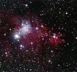 NGC 2264 the Christmas Tree Cluster